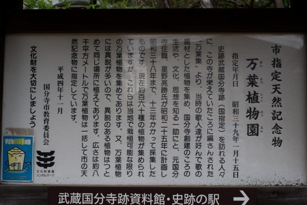 国分寺周辺の山 武蔵台公園