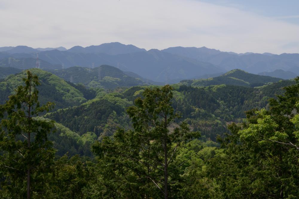 龍崖山と柏木山