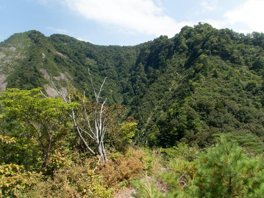 ガイドプラン 飯士山