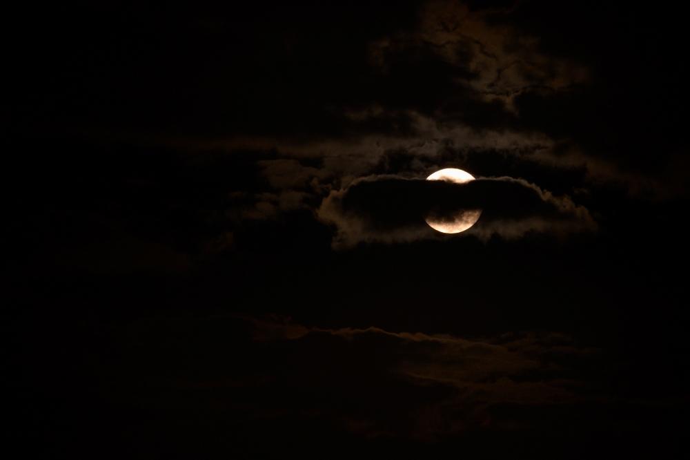 中秋の名月・その2